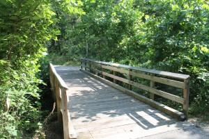 Wooden footbridge through the forest