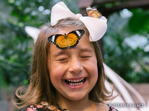 Young girl laughing at a butterfly that landed on her nose.