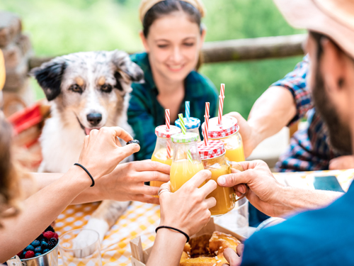 Family in summer outfits eating at an outdoor picnic table with their dog.
