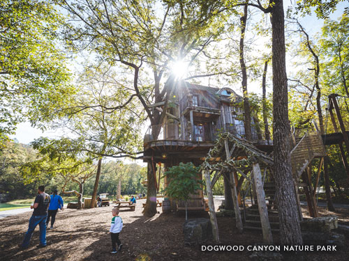 Outdoor playground and tree house in 10,000 acre nature park near Branson.