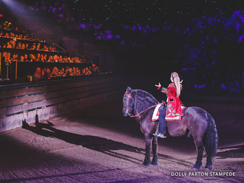 Woman wearing red uniform stopped in line with a spotlight while riding a horse and bowing to a large audience at a live show in Branson.