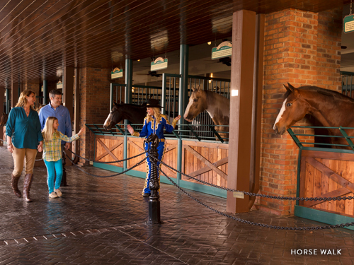 Family of three being led by performer at Dolly Parton's Stampede to meet the horses that star in the Branson dinner show.