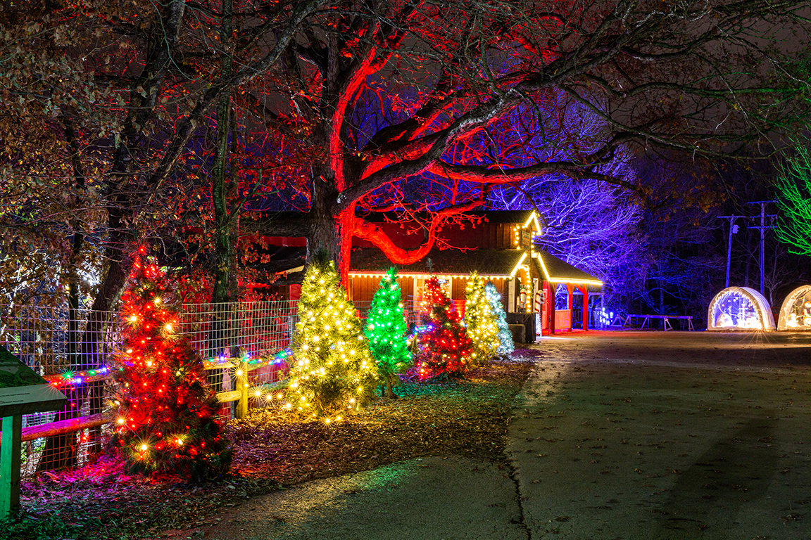 Shepherd of the Hills Trail of Lights