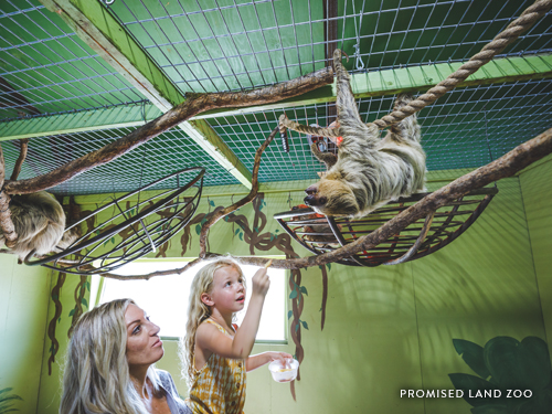 Mother and daughter playing with and feeding a live sloth at a zoo in Branson.