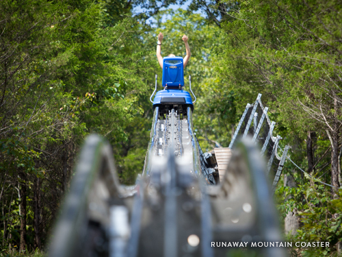 Mountain Coaster car gliding on the track in Branson.