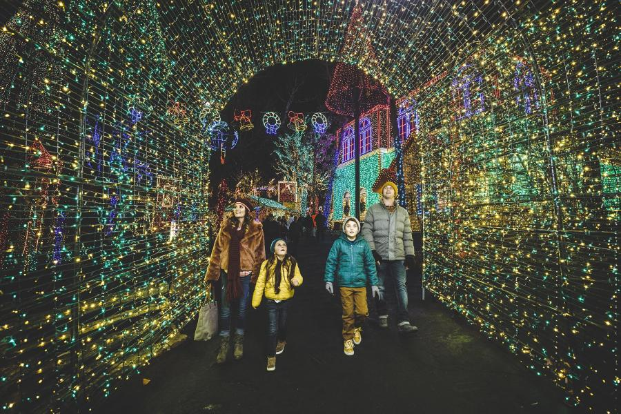 Young family walks through tunnel of green and yellow Christmas lights.
