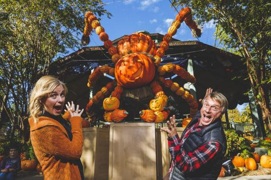 Man and woman standing in front of a giant spider made out of hand-carved pumpkins at a theme park's fall festival in Branson.