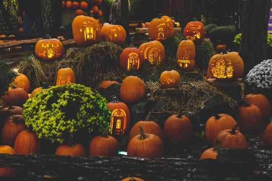 Dozens of hand-carved pumpkins lighting up the night at a fall festival in Branson.